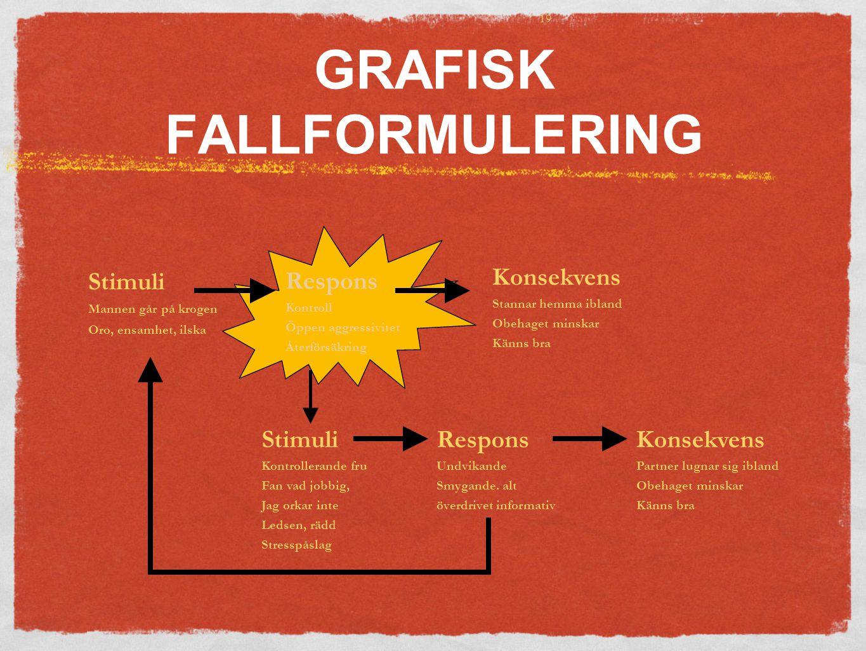 GRAFISK FALLFORMULERING