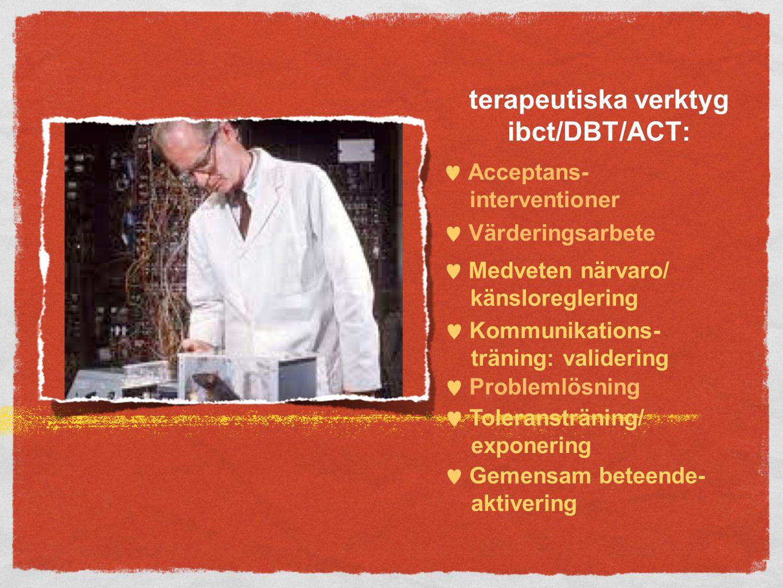 terapeutiska verktyg ibct/DBT/ACT: