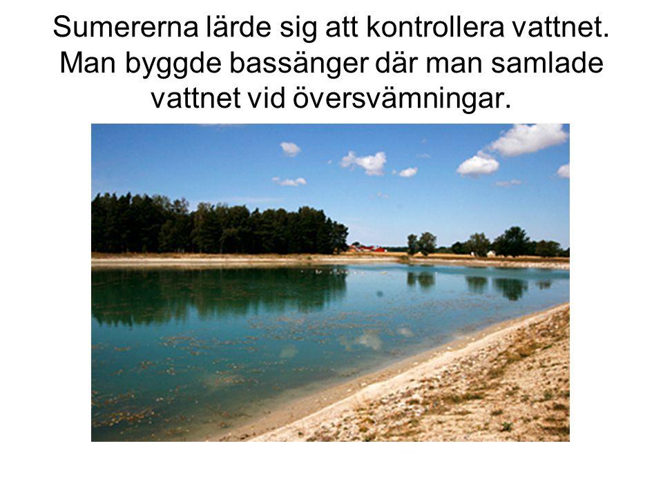 Sumererna lärde sig att kontrollera vattnet