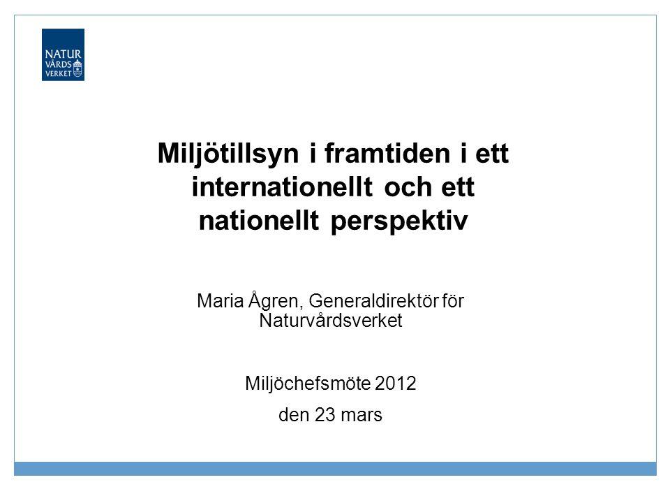 Maria Ågren, Generaldirektör för Naturvårdsverket