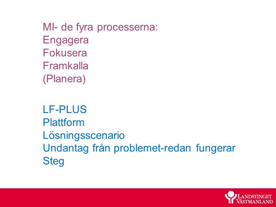 MI- de fyra processerna: Engagera Fokusera Framkalla (Planera)