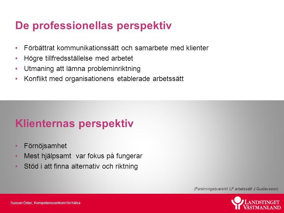 De professionellas perspektiv
