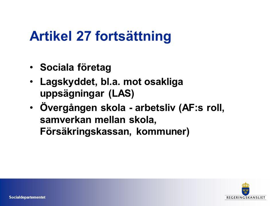 Artikel 27 fortsättning Sociala företag