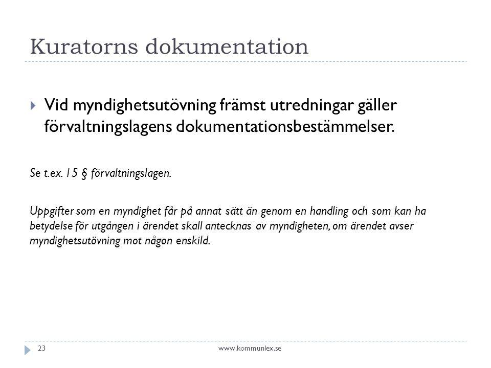 Kuratorns dokumentation