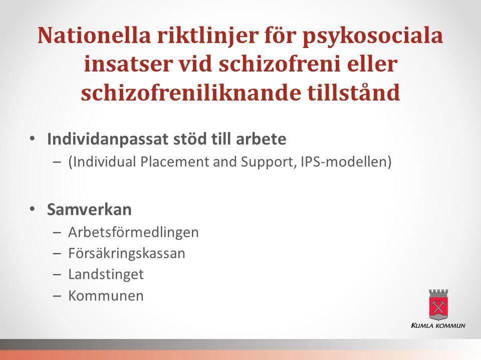 Nationella riktlinjer för psykosociala insatser vid schizofreni eller schizofreniliknande tillstånd