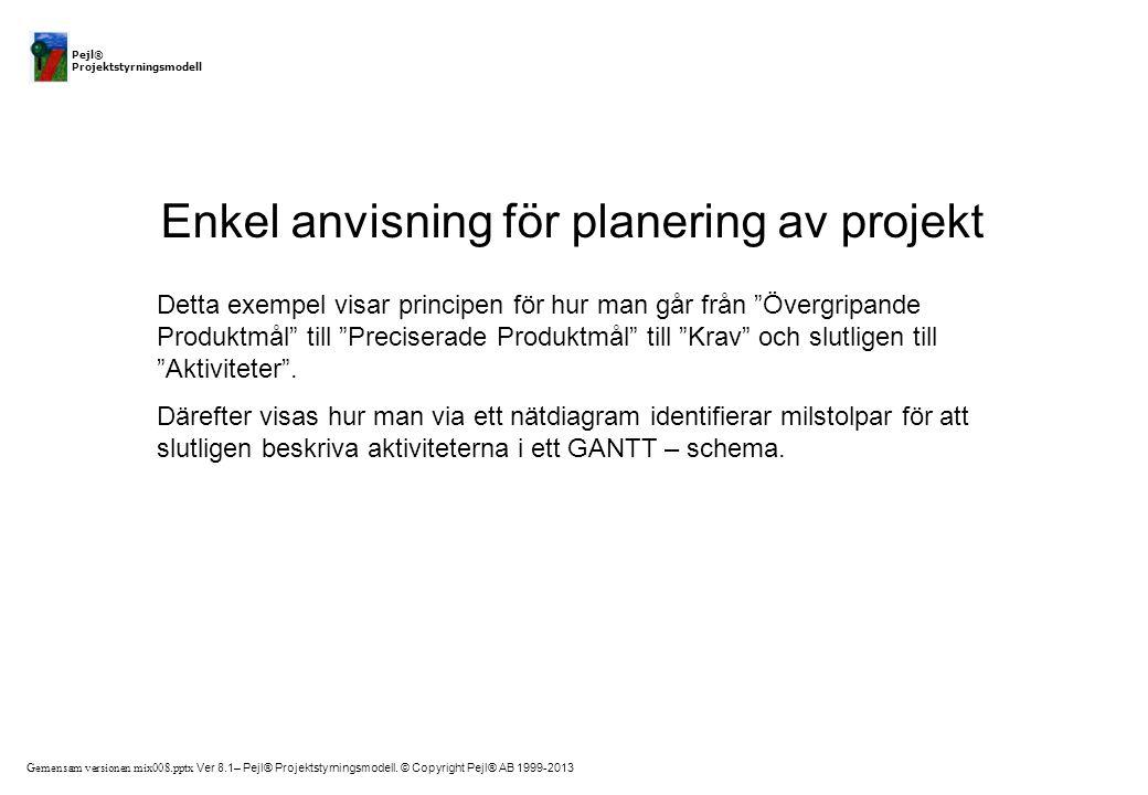 Enkel anvisning för planering av projekt