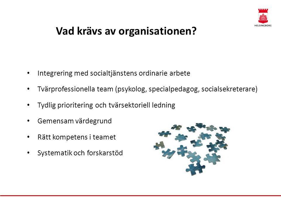 Vad krävs av organisationen
