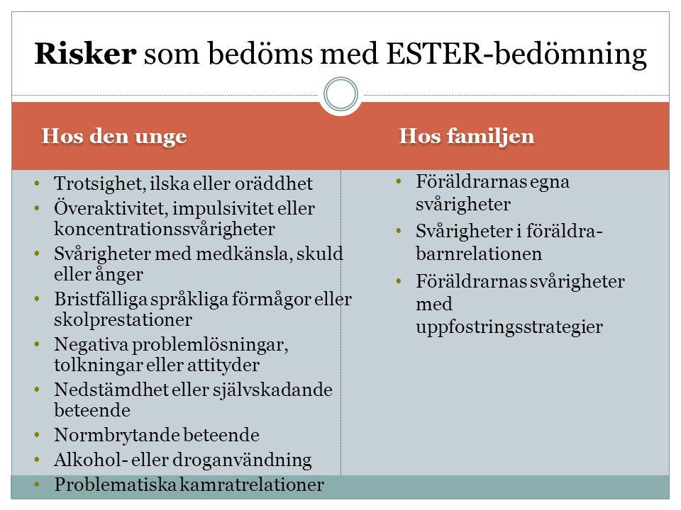 Risker som bedöms med ESTER-bedömning