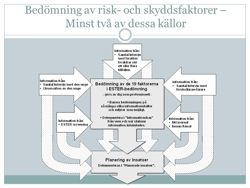 Bedömning av risk- och skyddsfaktorer –Minst två av dessa källor