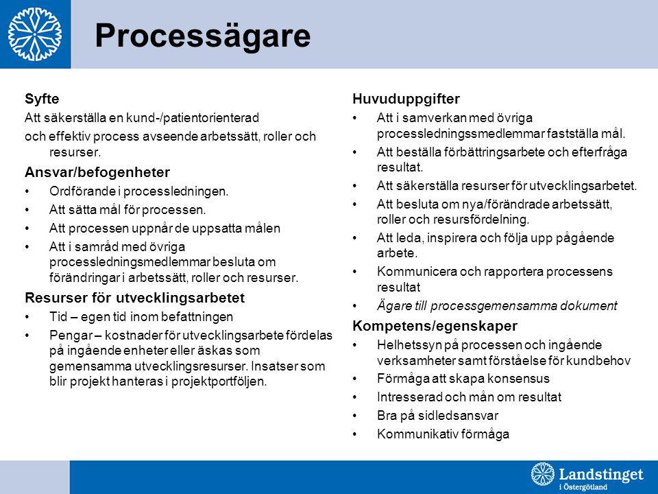 Processägare Syfte Ansvar/befogenheter Resurser för utvecklingsarbetet
