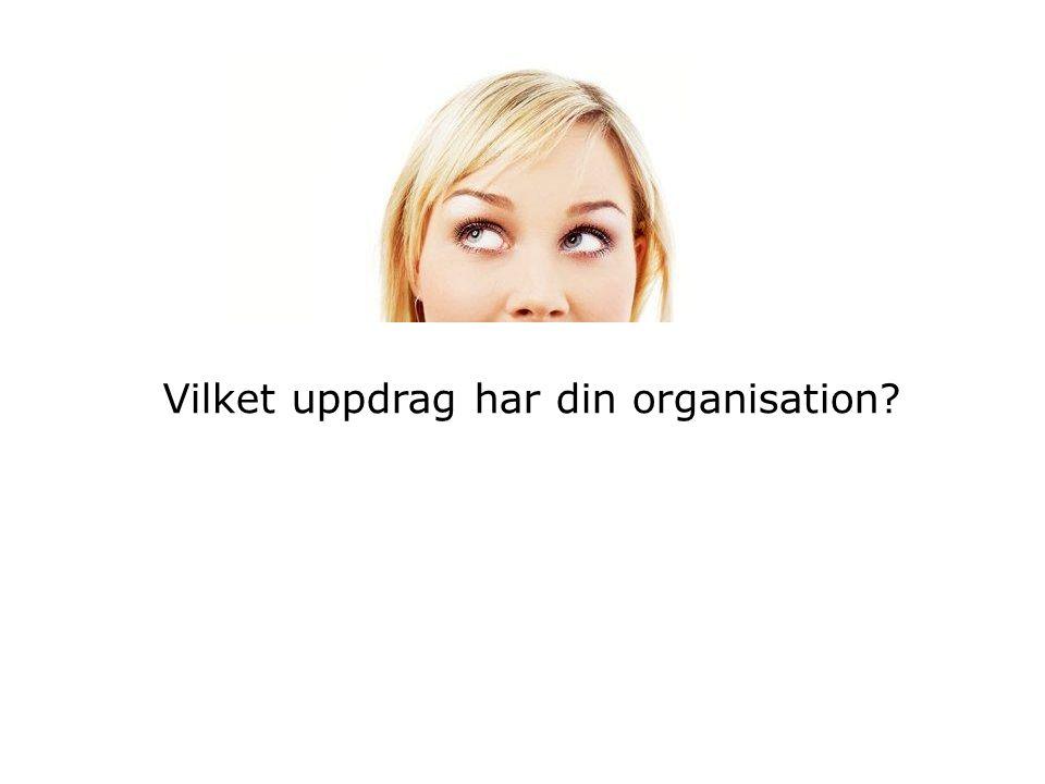 Vilket uppdrag har din organisation