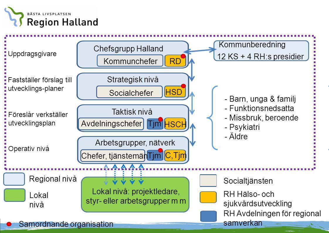 Lokal nivå: projektledare, styr- eller arbetsgrupper m m