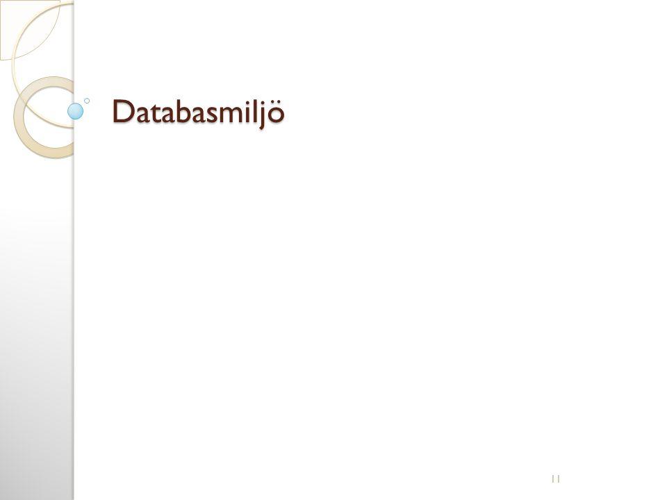 Databasmiljö