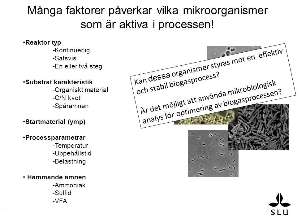 Många faktorer påverkar vilka mikroorganismer som är aktiva i processen!