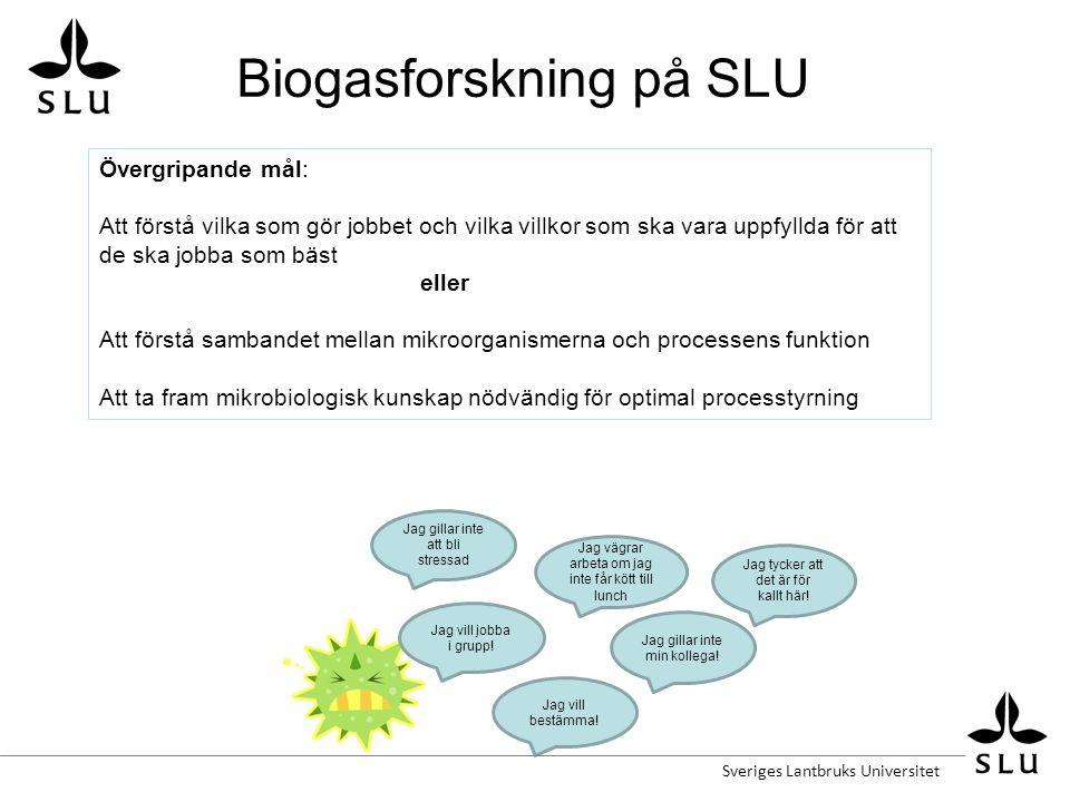 Biogasforskning på SLU