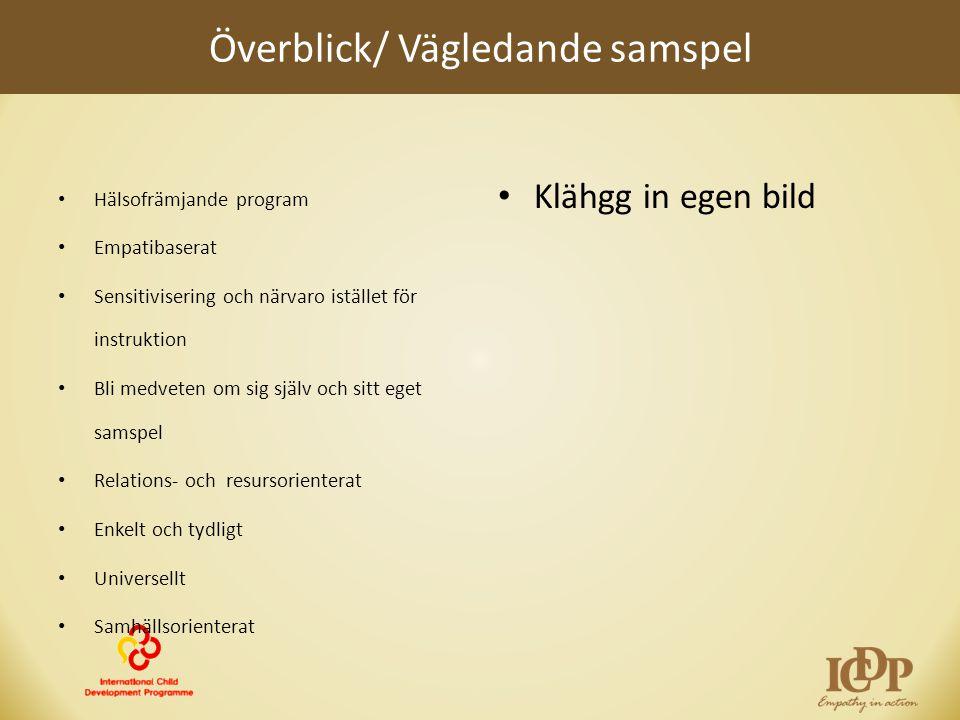 Överblick/ Vägledande samspel