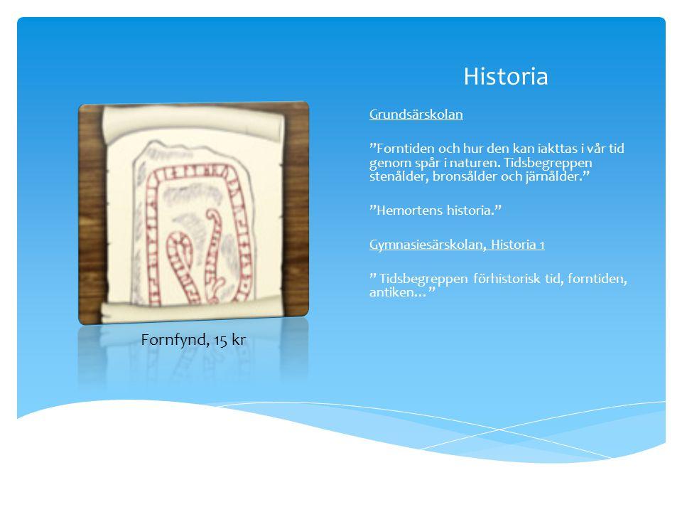 Historia Fornfynd, 15 kr Grundsärskolan