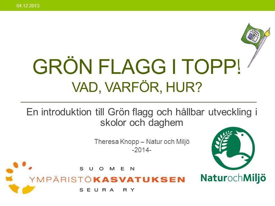Grön flagg i topp! VAD, VARFÖR, HUR