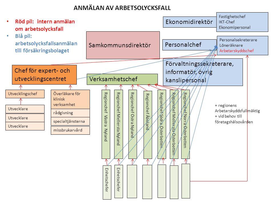 ANMÄLAN AV ARBETSOLYCKSFALL