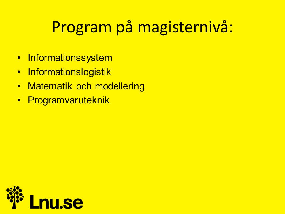 Program på magisternivå: