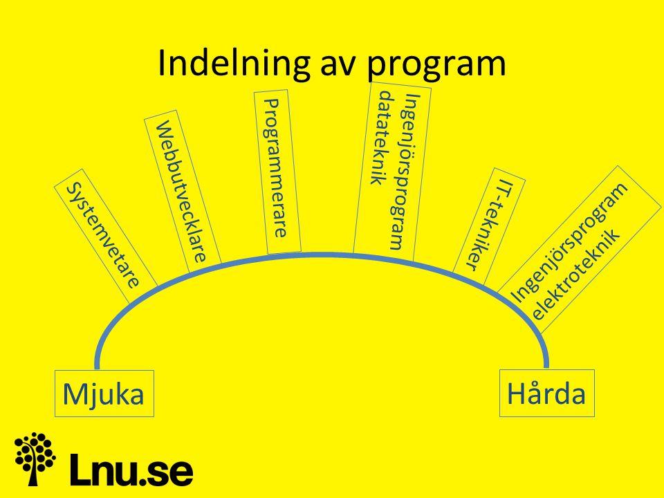 Indelning av program Mjuka Hårda Ingenjörsprogram datateknik