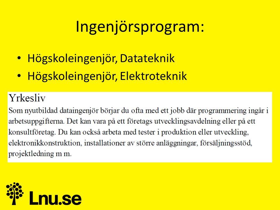 Ingenjörsprogram: Högskoleingenjör, Datateknik