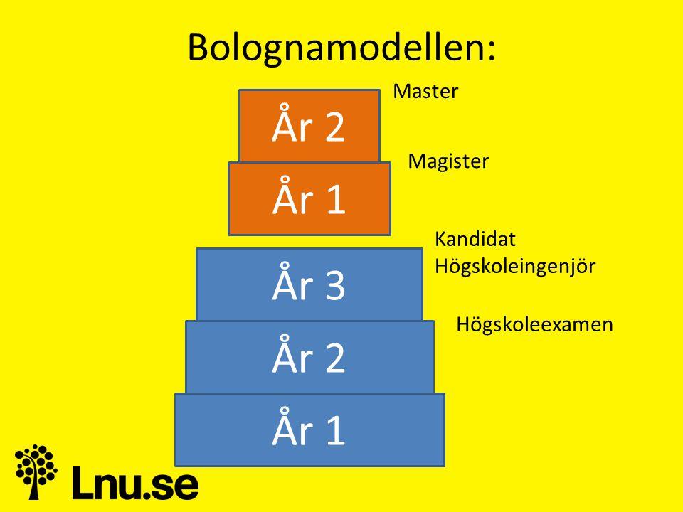 År 2 År 1 År 3 År 2 År 1 Bolognamodellen: Master Magister Kandidat