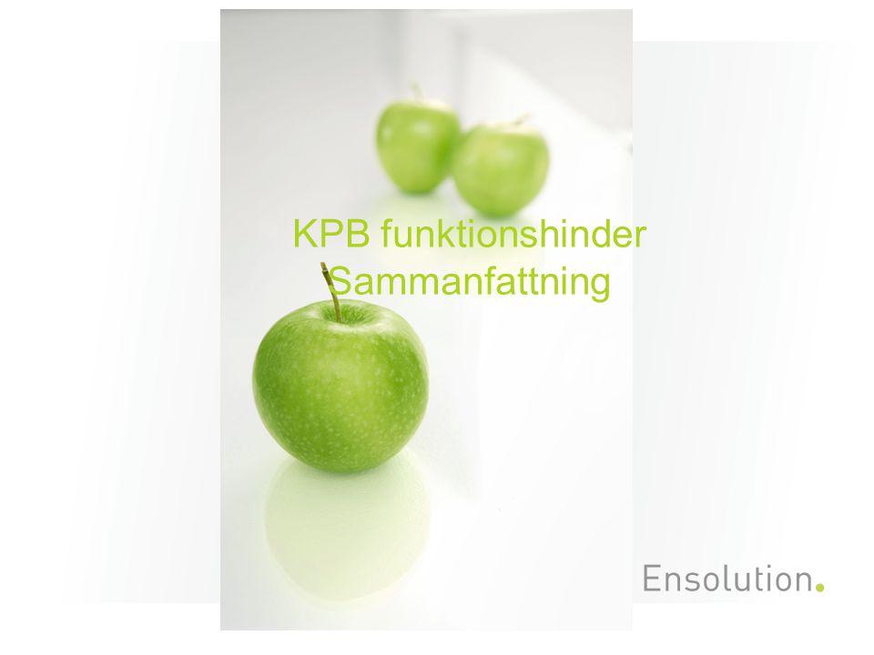 KPB funktionshinder Sammanfattning