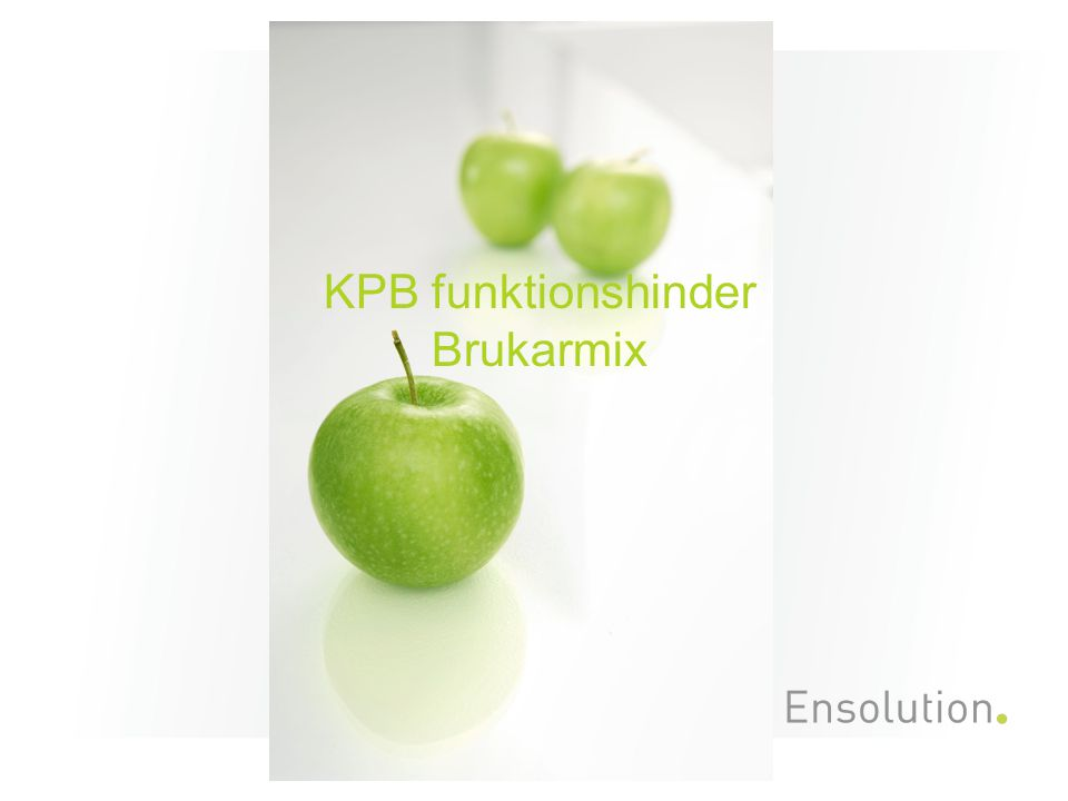 KPB funktionshinder Brukarmix