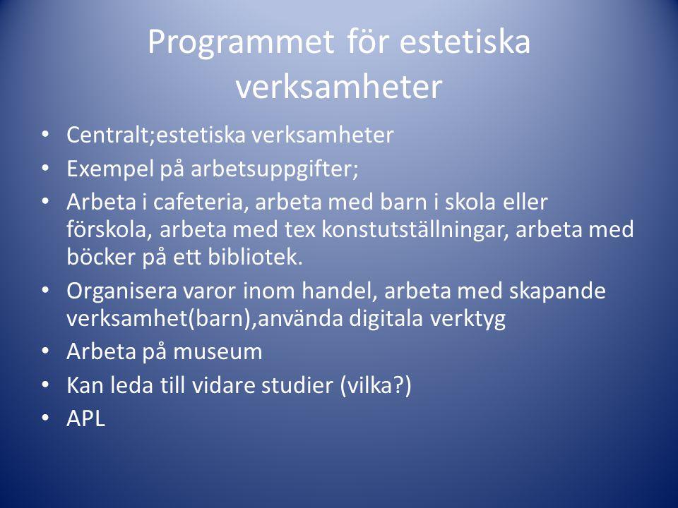 Programmet för estetiska verksamheter