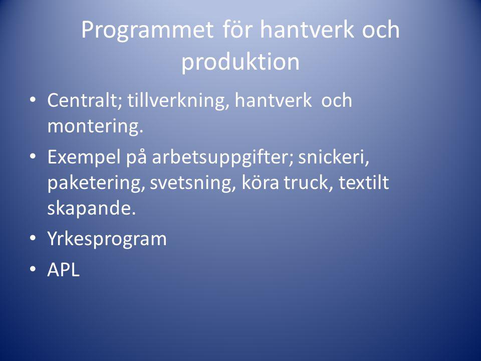 Programmet för hantverk och produktion