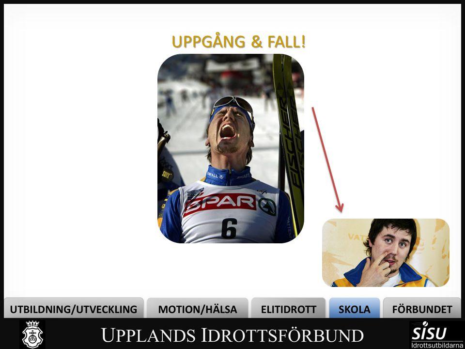 UPPGÅNG & FALL!