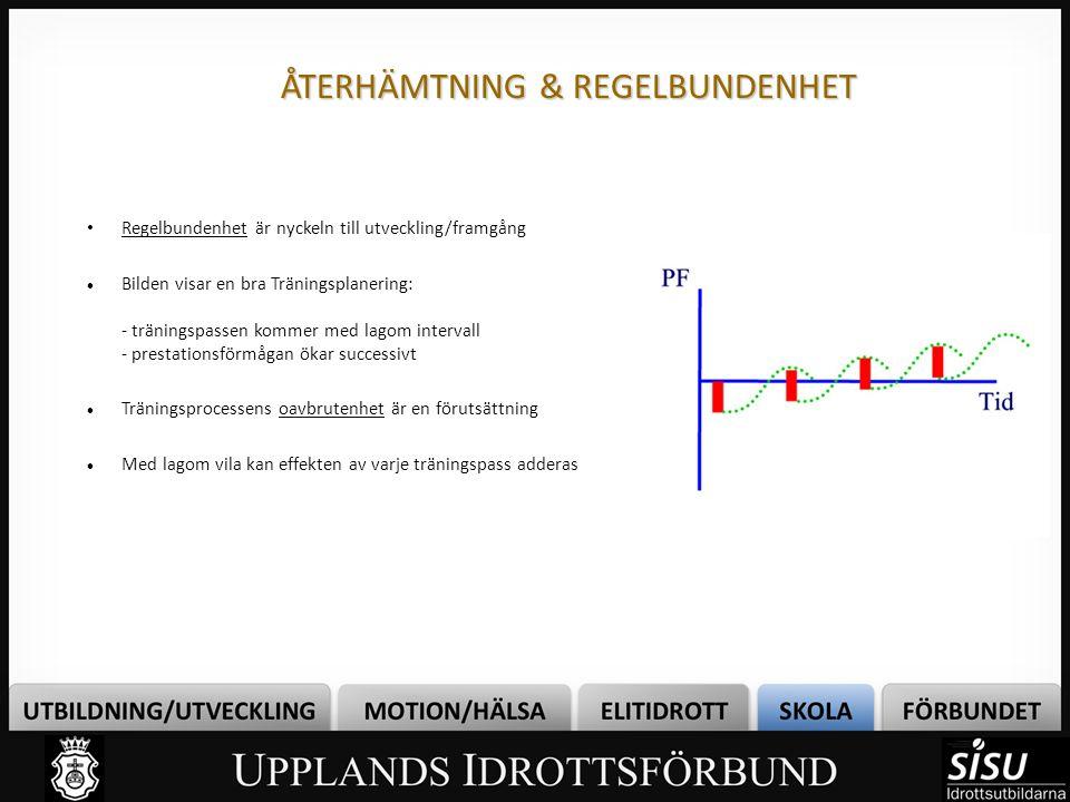 ÅTERHÄMTNING & REGELBUNDENHET