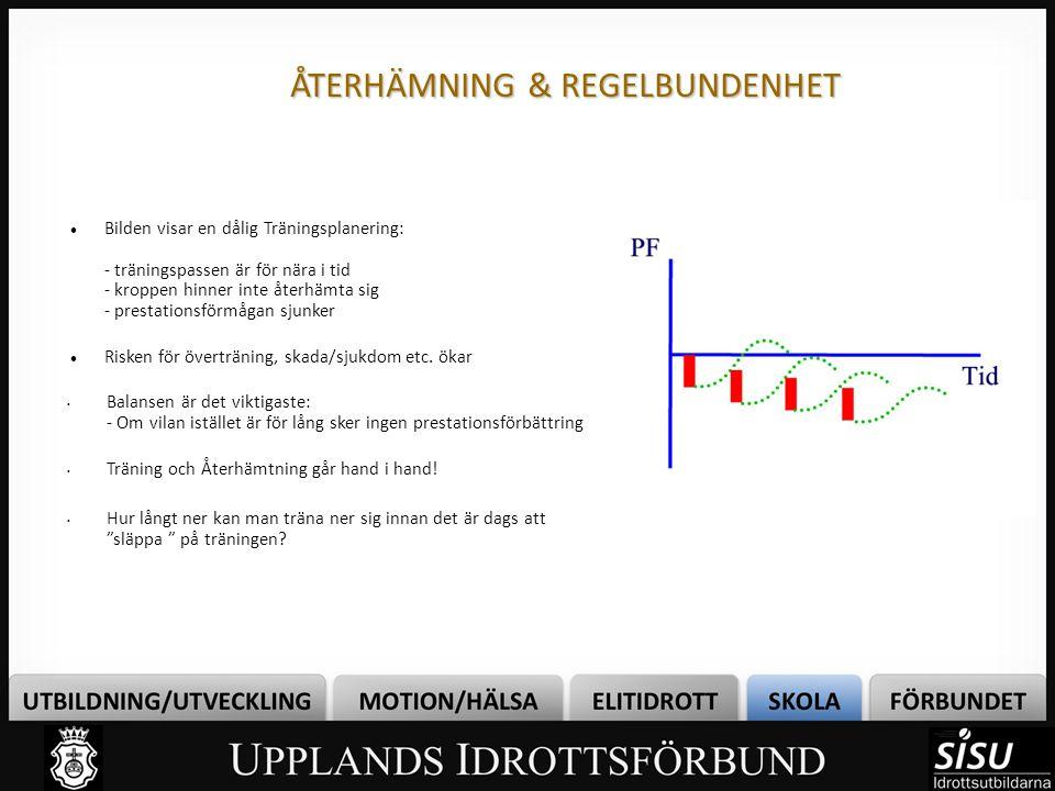 ÅTERHÄMNING & REGELBUNDENHET