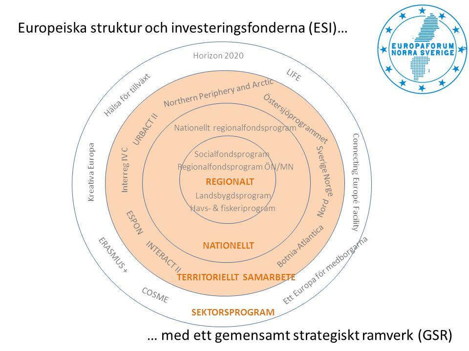Europeiska struktur och investeringsfonderna (ESI)…