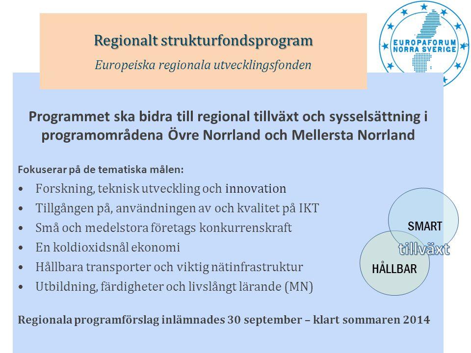 tillväxt Regionalt strukturfondsprogram