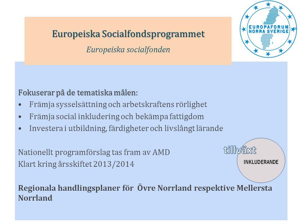 tillväxt Europeiska Socialfondsprogrammet Europeiska socialfonden