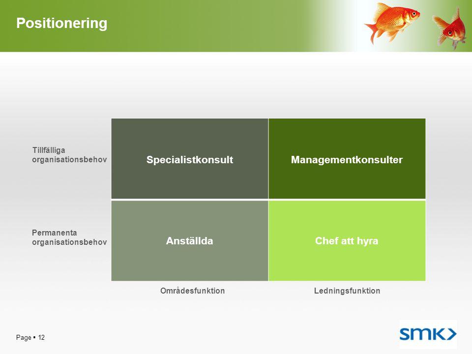 Positionering Specialistkonsult Managementkonsulter Anställda