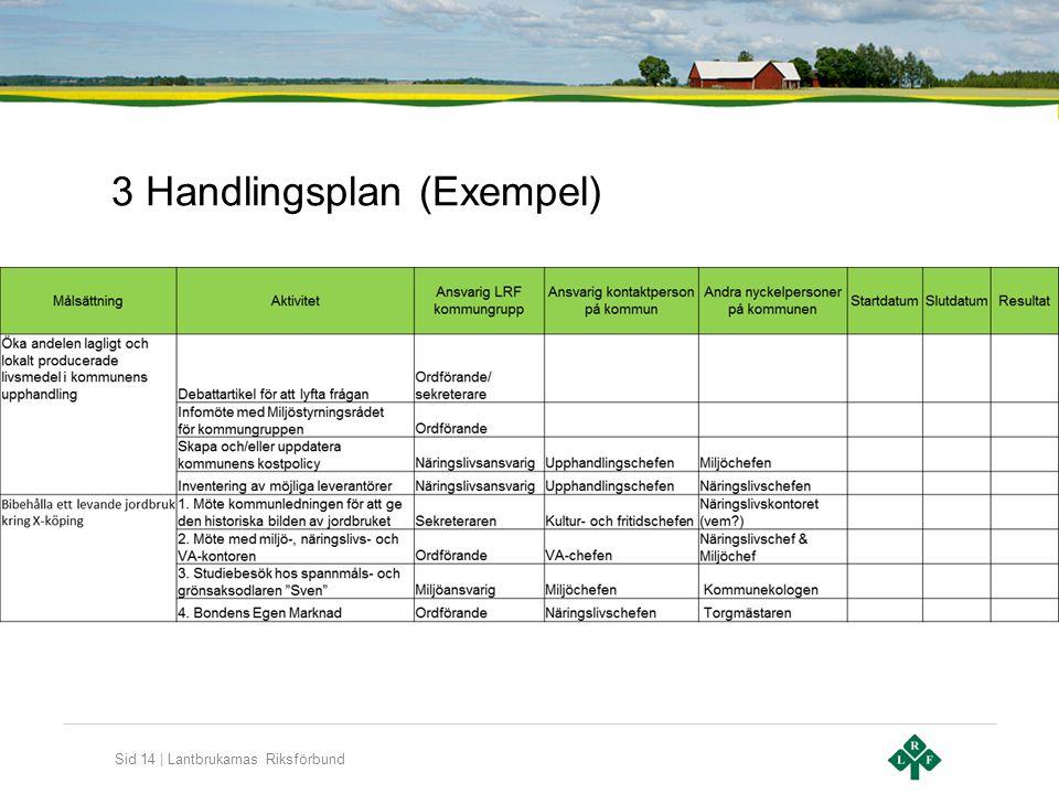 3 Handlingsplan (Exempel)