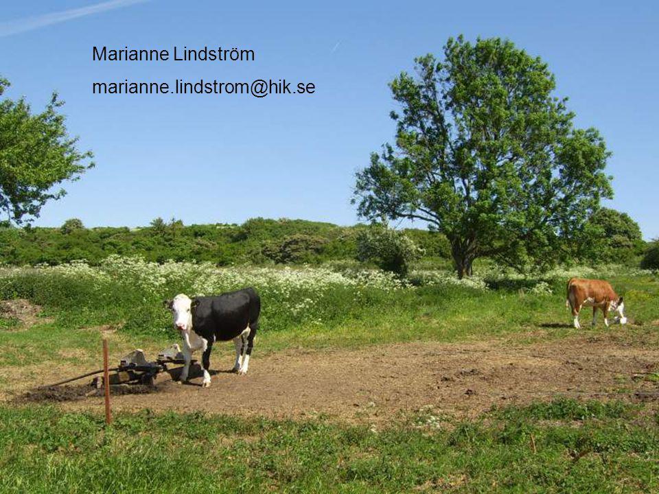 Marianne Lindström marianne.lindstrom@hik.se