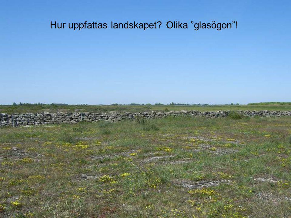 Hur uppfattas landskapet Olika glasögon !