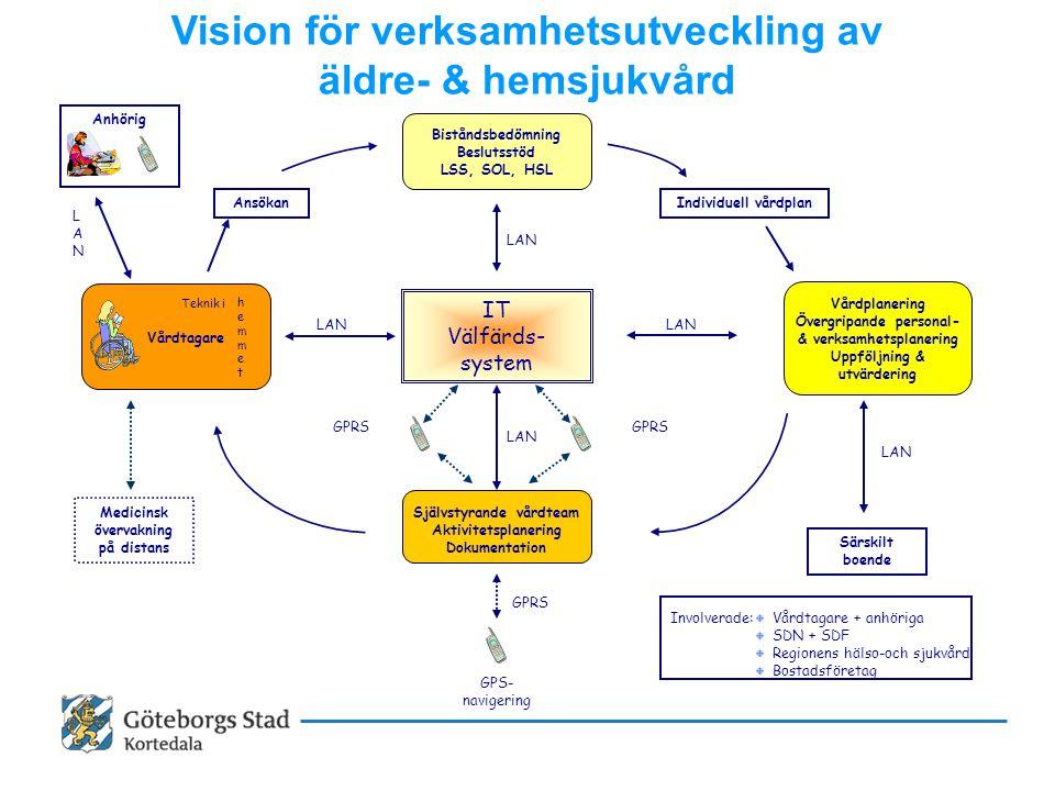 Vision för verksamhetsutveckling av