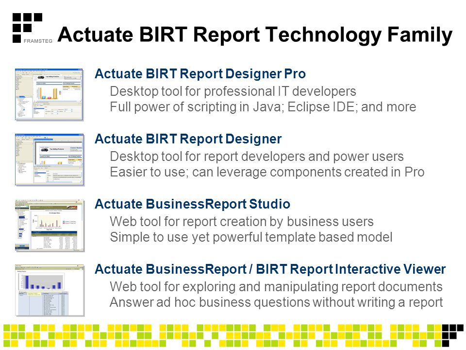 Actuate BIRT Report Technology Family