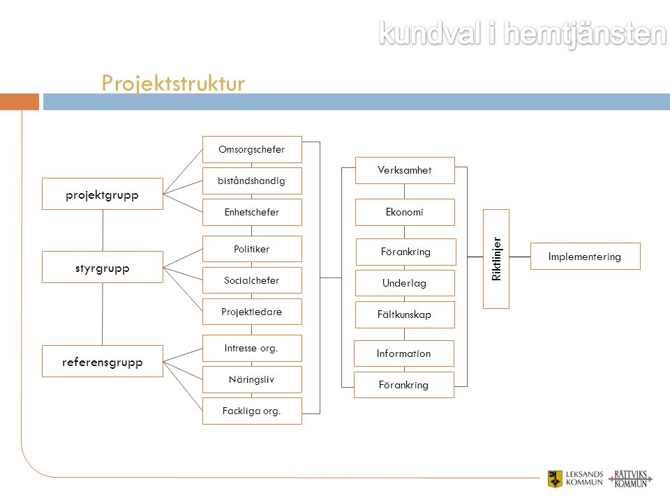 Projektstruktur projektgrupp styrgrupp referensgrupp Riktlinjer