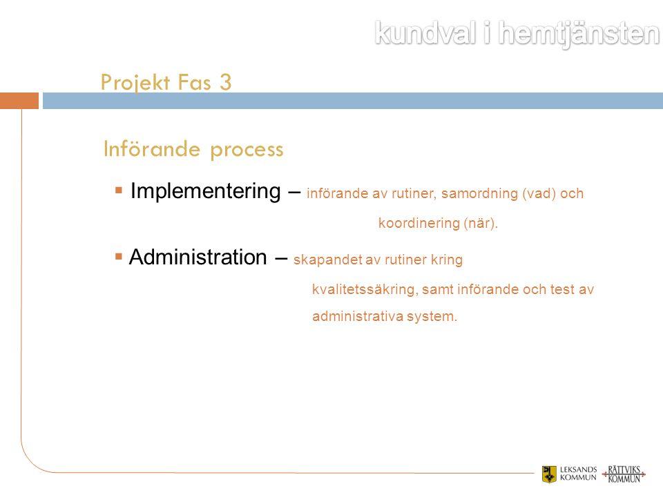 Projekt Fas 3 Införande process