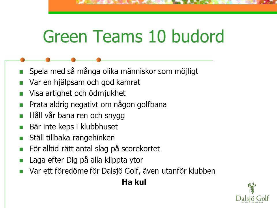 Green Teams 10 budord Spela med så många olika människor som möjligt