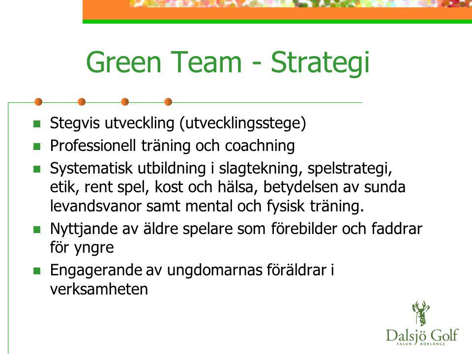 Green Team - Strategi Stegvis utveckling (utvecklingsstege)
