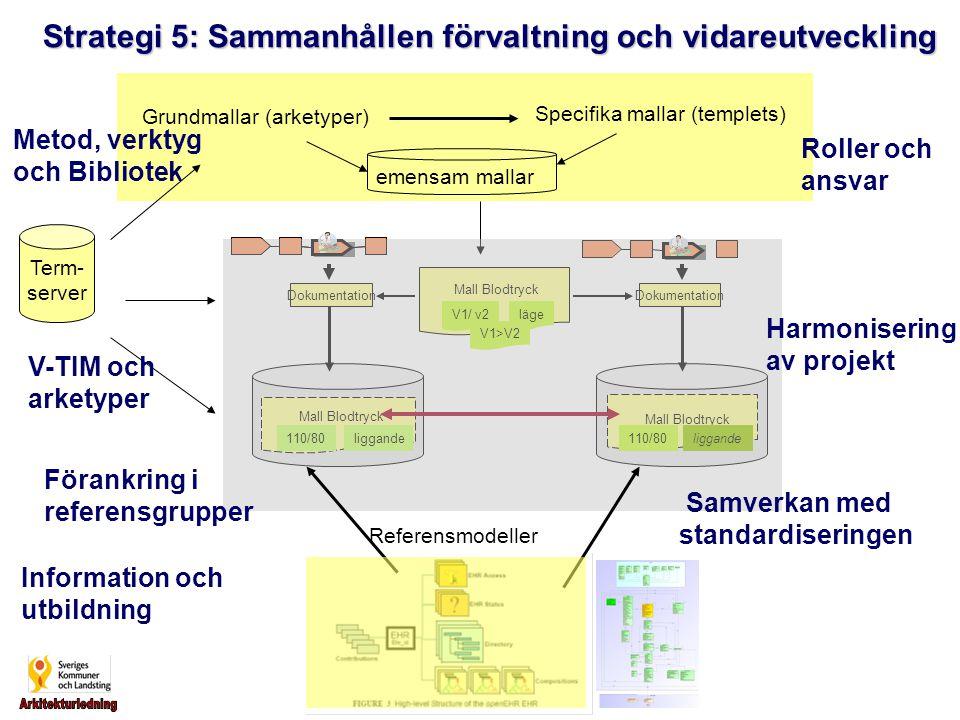 Strategi 5: Sammanhållen förvaltning och vidareutveckling