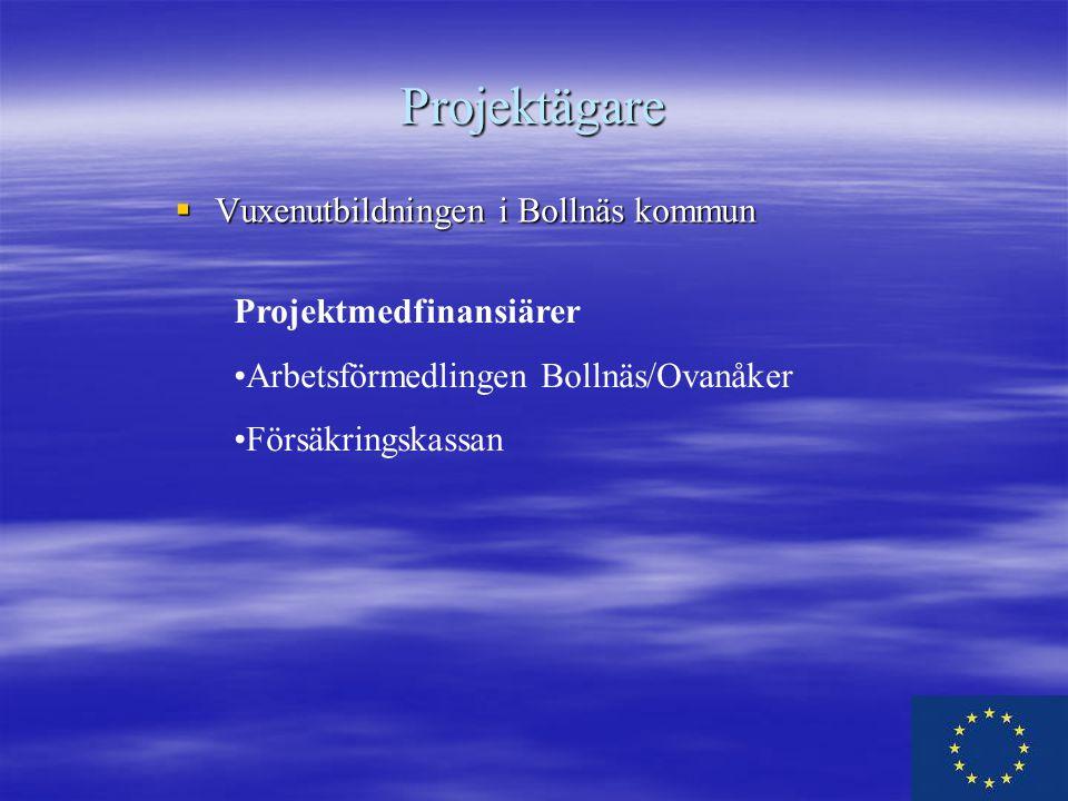Projektägare Vuxenutbildningen i Bollnäs kommun Projektmedfinansiärer