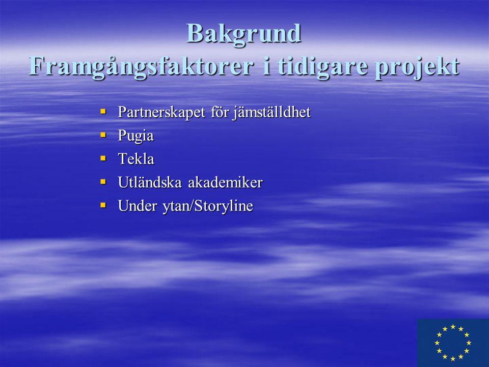 Bakgrund Framgångsfaktorer i tidigare projekt